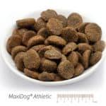MaxiDog® Athletic
