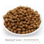 MaxiDog® Junior